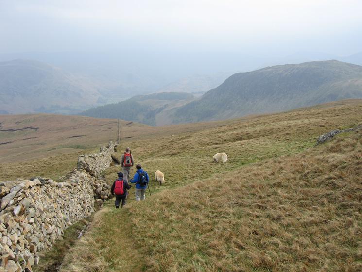 Heading down towards Glencoyne by the wall below Birkett Fell