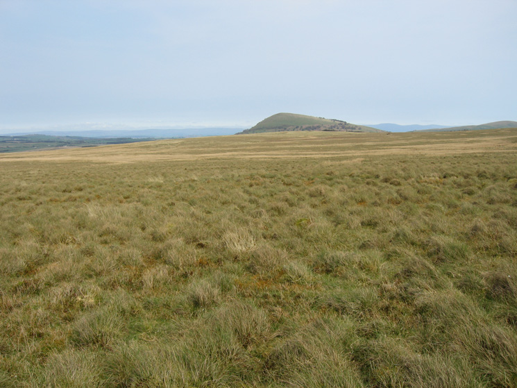 Crossing Barbaryrigg Moss with Great Mell Fell ahead