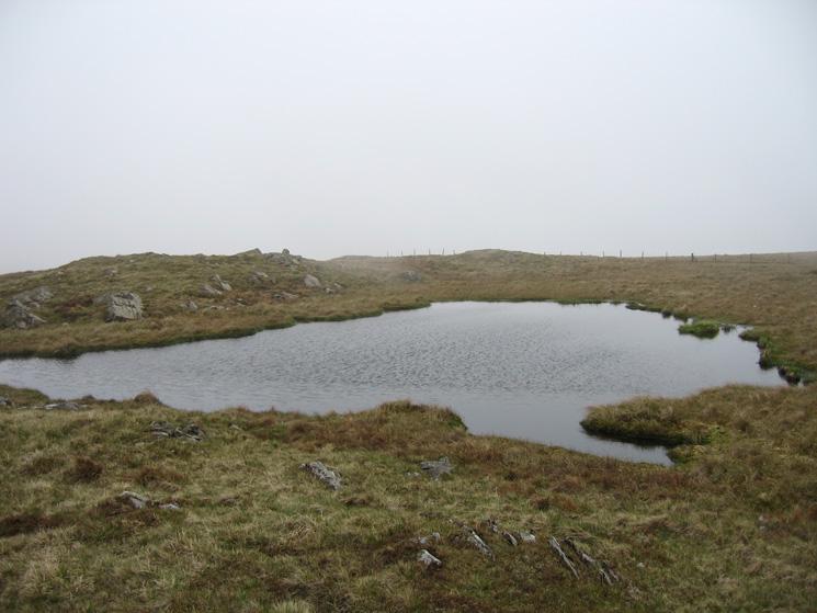 A small nameless tarn on the ridge between Capplebarrow and Ancrow Brow