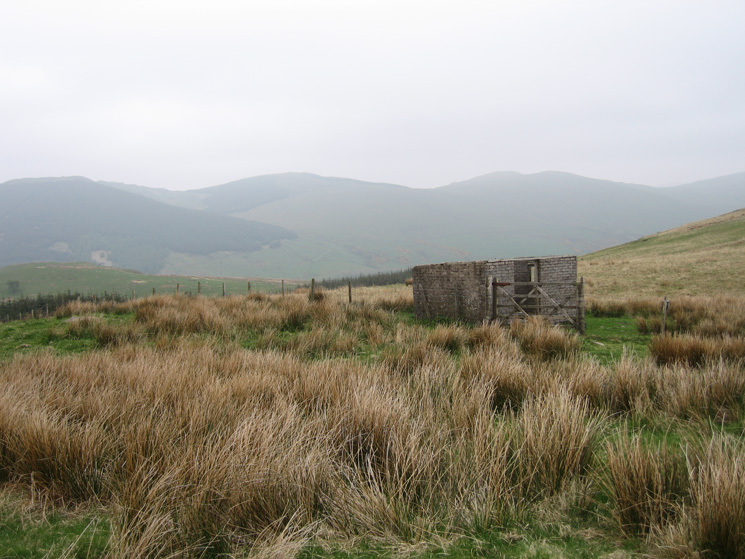 Part of the Whinfell ridge from the derelict hut to the southeast of Lamb Pasture's summit