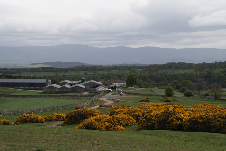 Cross Fell (North Pennines) from above Townhead, Askham