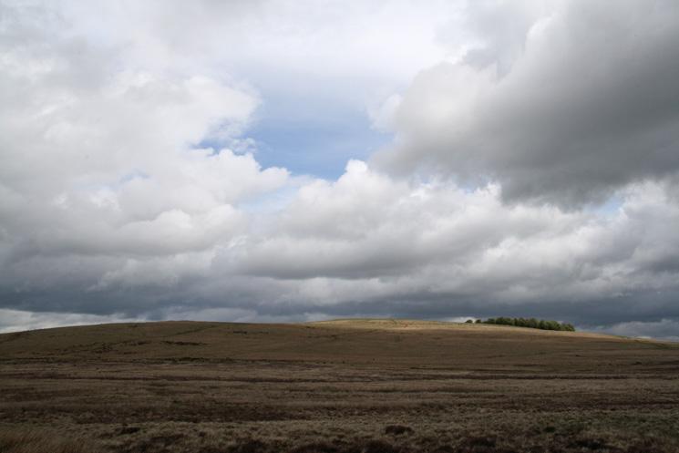 Heughscar Hill from near The Cockpit