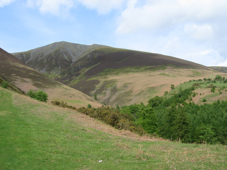 Skiddaw Little Man from above Millbeck, my line of ascent is to be up the heathery slope right of centre