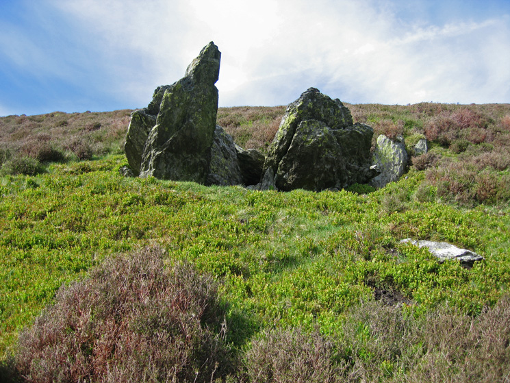 The two boulders up close, no where near the summit but they do mark the end of the heather!