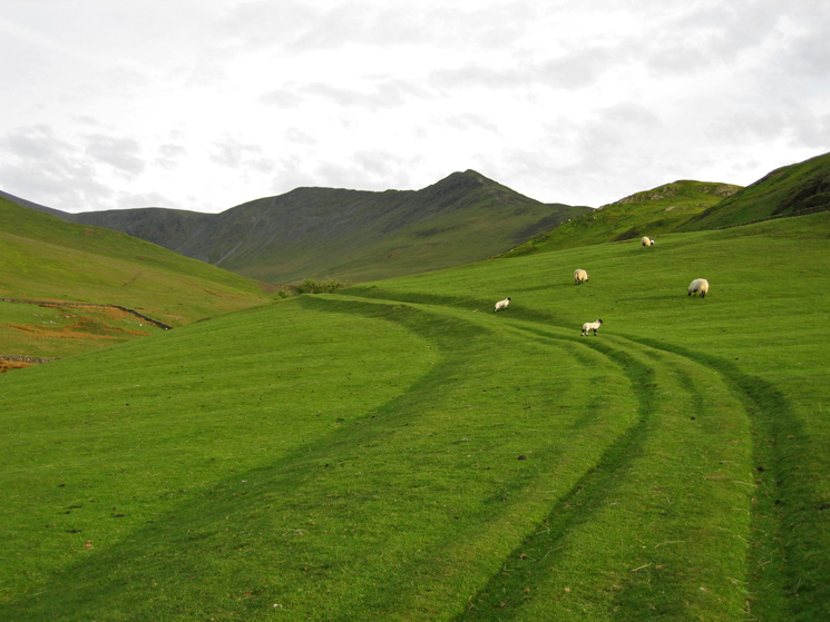 Carl Side, Long Side and Ullock Pike from the fields above High Side
