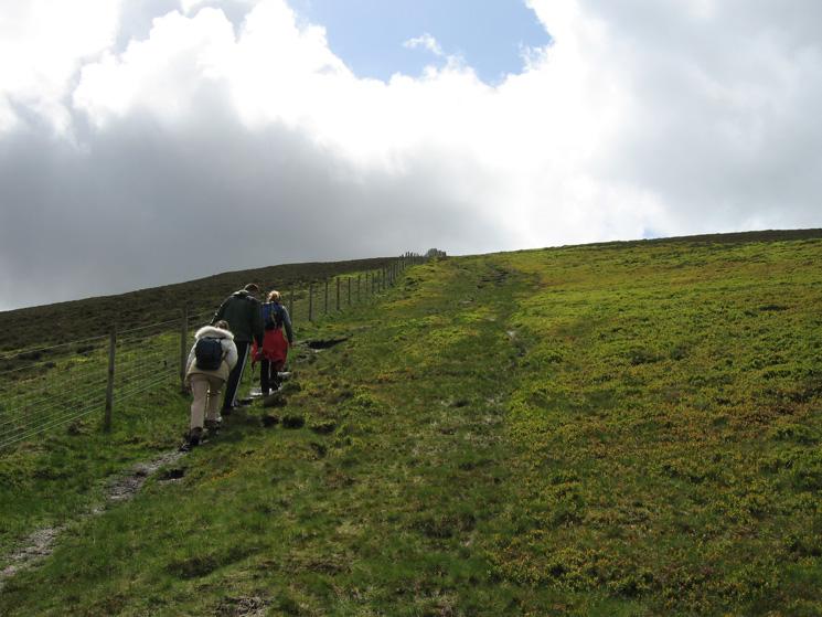 Ascending Birkett Edge