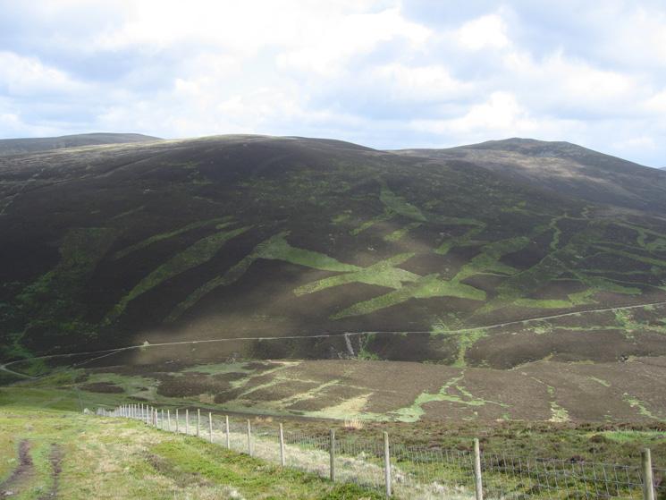 Looking across to Little Calva and Great Calva (right) from Birkett Edge