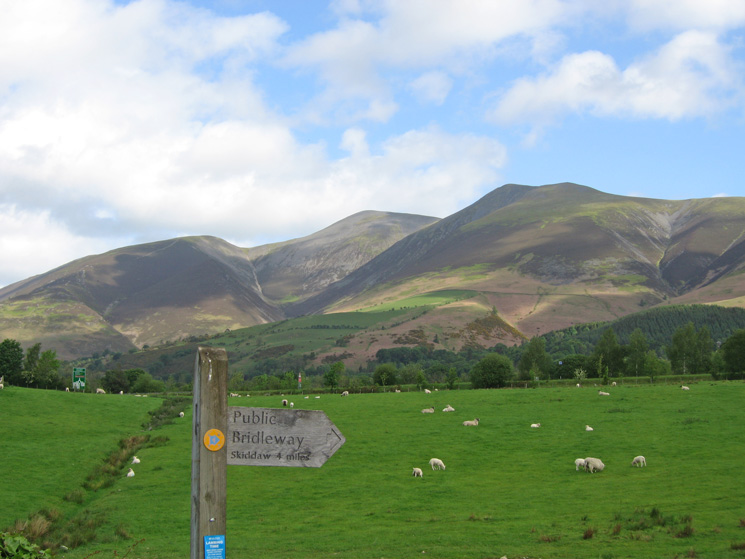 Carl Side, Skiddaw and Skiddaw Little Man from the end of Spoony Green Lane
