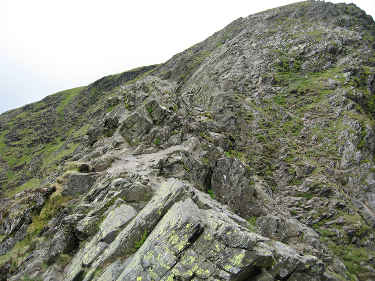 ...another shot of Sharp Edge
