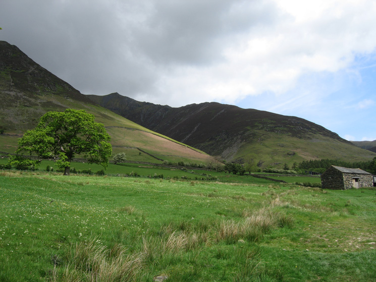 Hall's Fell Ridge from the fields between Gategill and Threlkeld