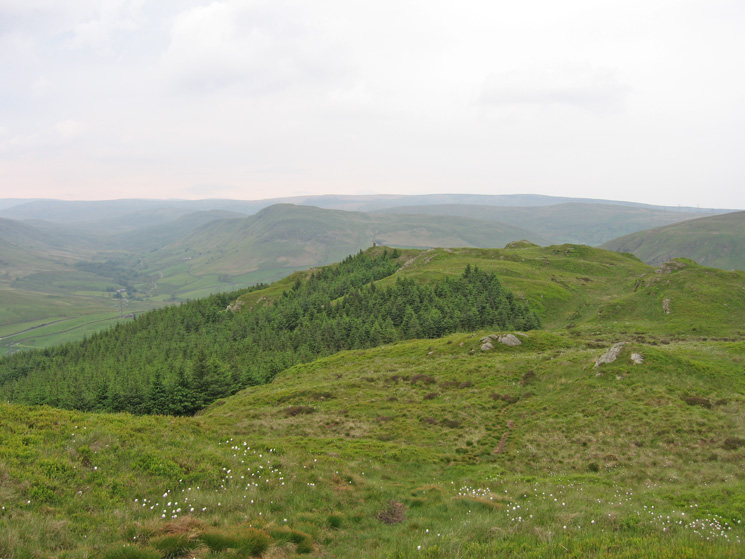 Ashstead Fell, looking back to its lower top