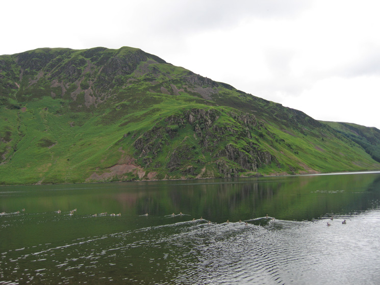Anglers' Crag and Crag Fell with geese on the water