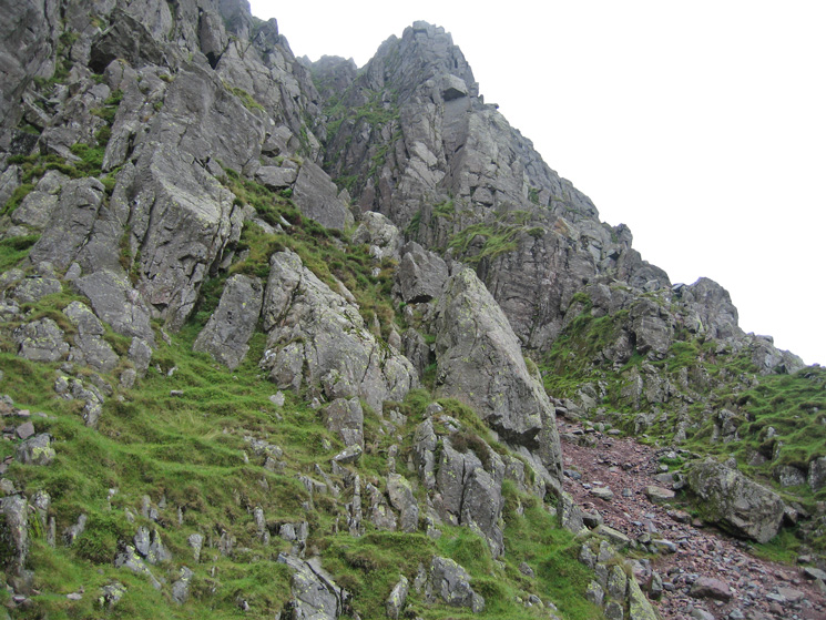 Looking up to Napes Needle