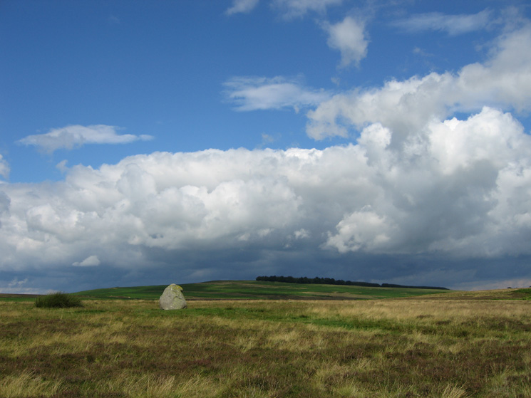 Looking towards Heughscar Hill from the Cop Stone