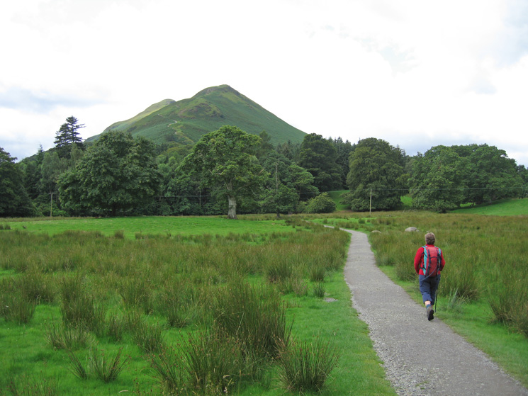 Catbells from 'The Park'
