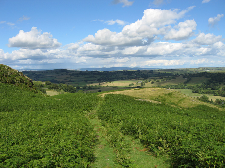 Looking east towards the North Pennines from above Burnbanks