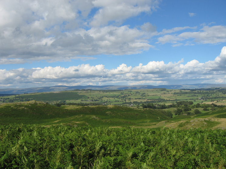 View east over Knipescar Common to the North Pennines
