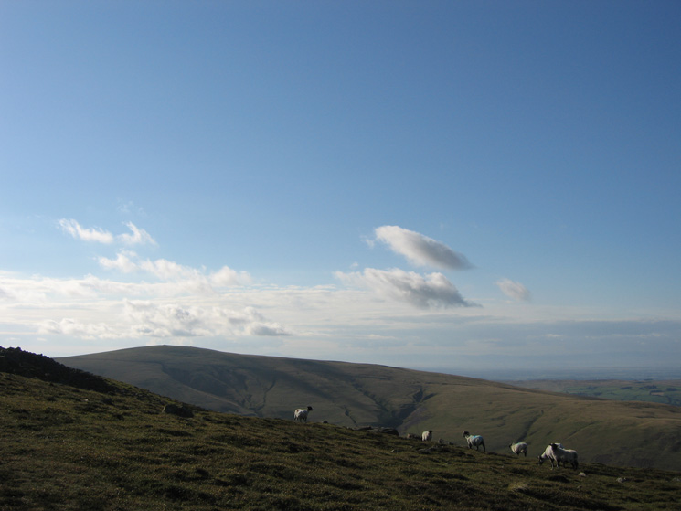 High Pike from just below Carrock Fell's summit