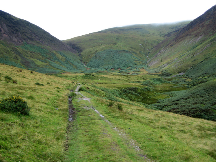 The way ahead, the path zig-zags up through the bracken directly ahead before heading left to the col between Gavel Fell and Blake Fell