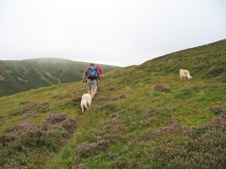 Heading for the col between Gavel Fell (left) and Blake Fell