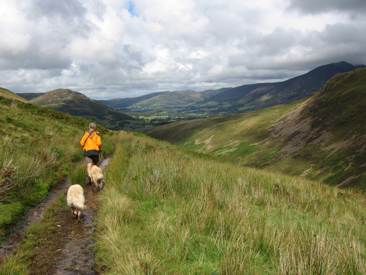 Heading along the track above Whiteoak Beck with the Vale of Lorton in the distance
