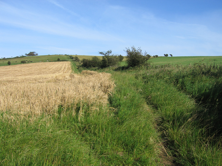 The public footpath heads straight for the ridge (skyline)