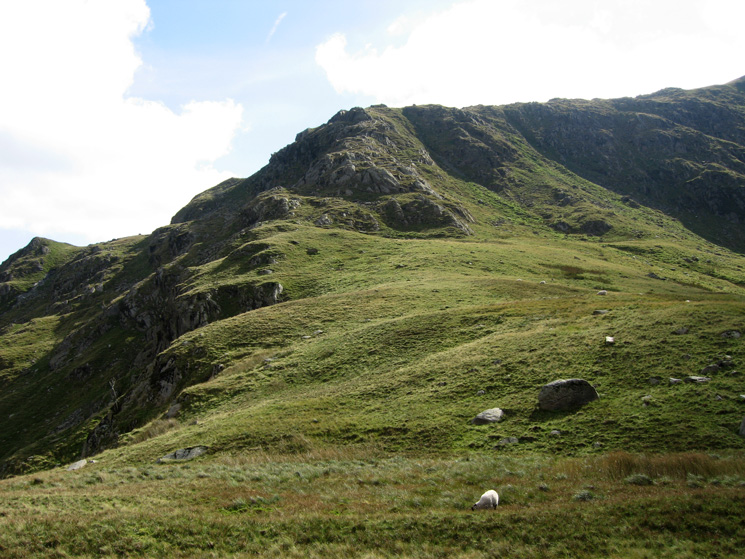 Another photo of Mardale Ill Bell's north ridge