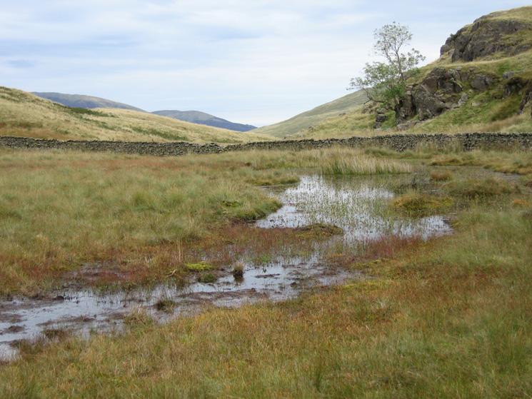 The path detours round this wet bit!