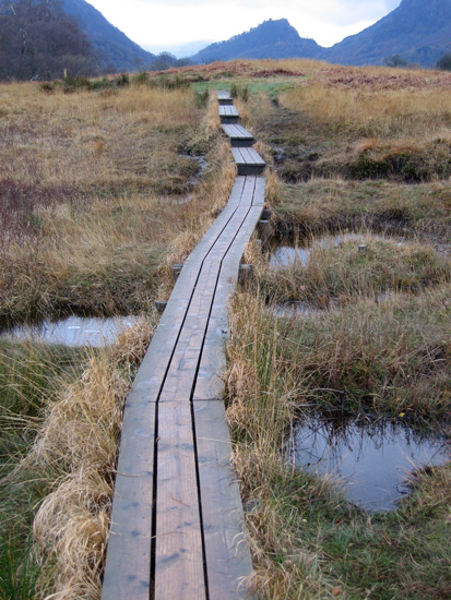 A section of boardwalk on the round Derwent Water path with Castle Crag in the distance