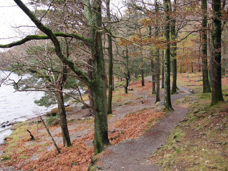 Looking back along a section of the lakeside path