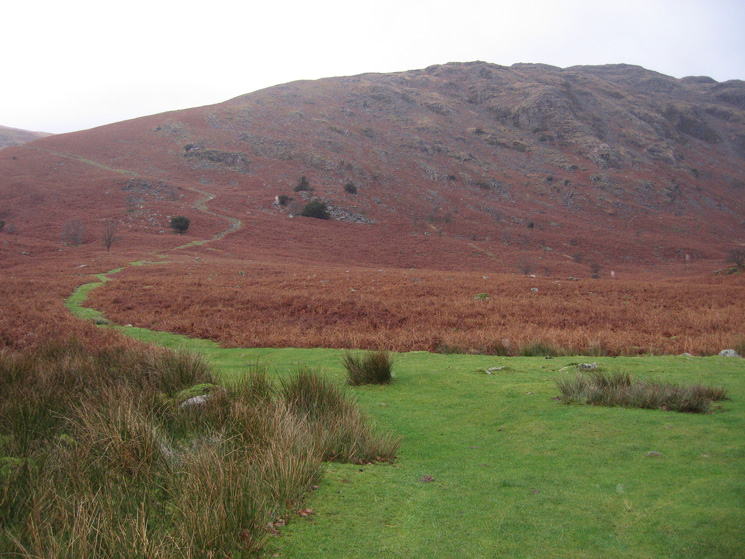 The start of the path up Middle Fell from Greendale