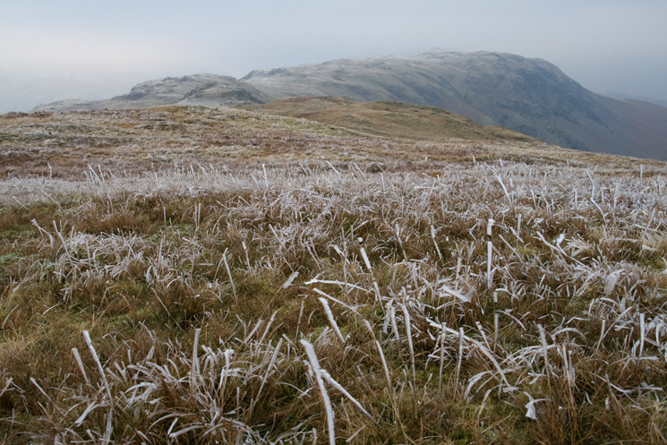 Looking to Steel Fell, the ground is well frozen today