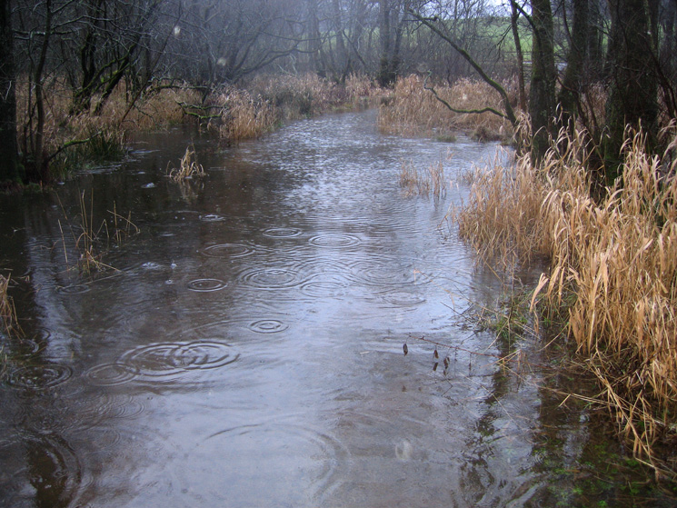 The path through The Ings, well under water today