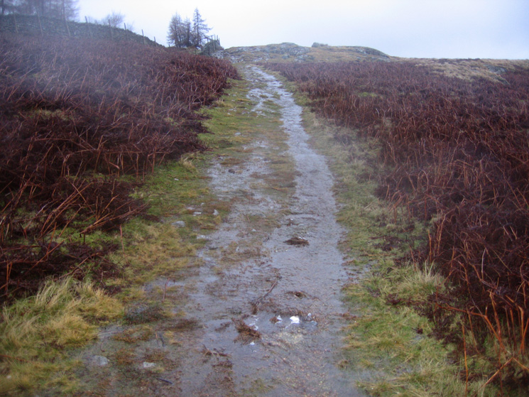 The waterlogged path leading up to Walla Crag's summit
