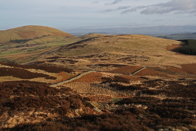 Little Mell Fell (far left), Watermillock Fell (pointed top) and Great Meldrum (moorland centre) from Gowbarrow Fell