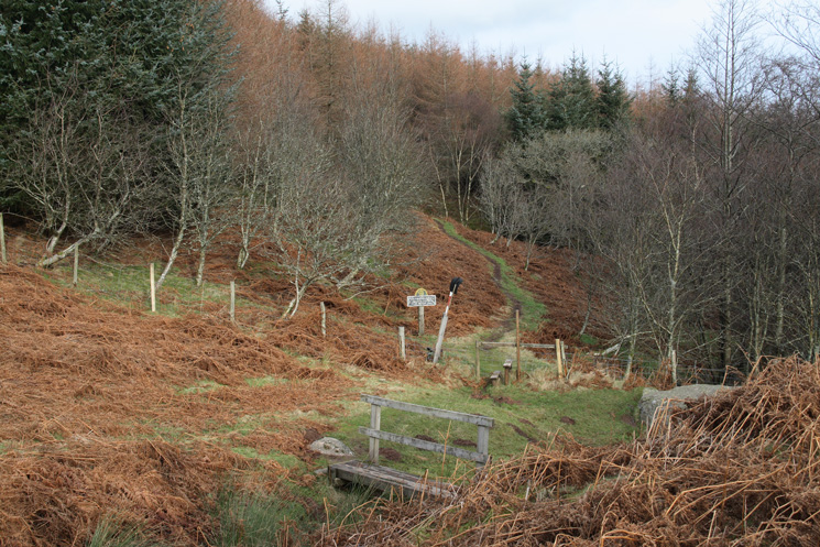 Looking back into Swinburn's Park as we reach the old shooting lodge on Gowbarrow Fell