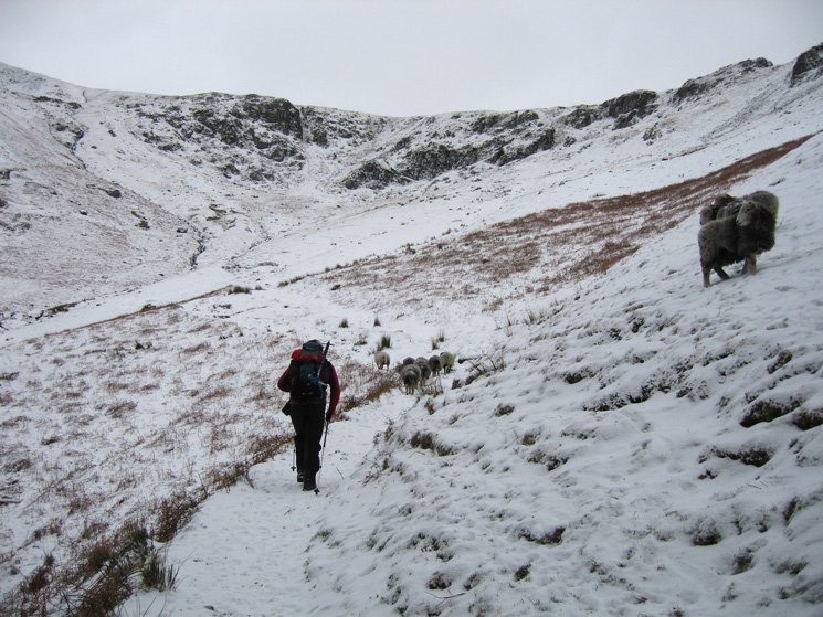 Heading into Comb Gill