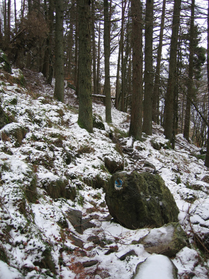 An old blue waymarker on the permissive path above Thirlmere