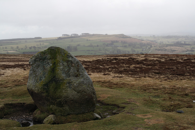 Cop Stone, Moor Divock with Knipescar Common behind