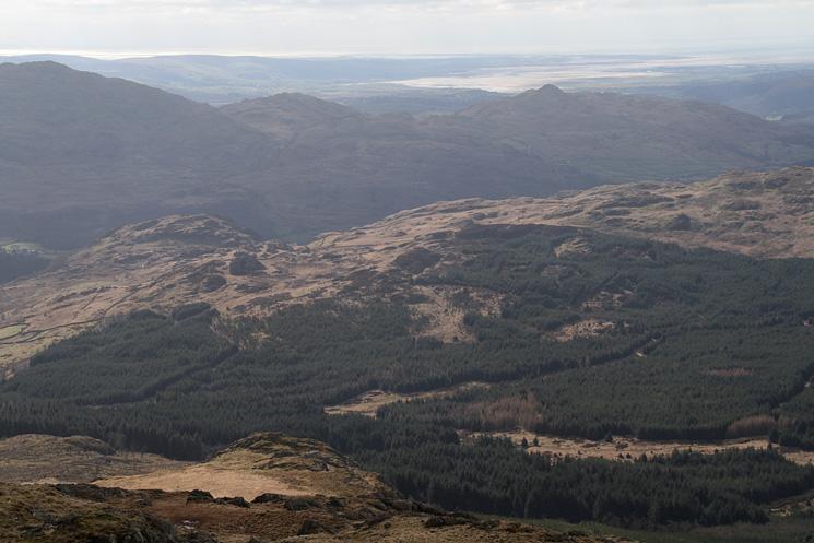 Dunnerdale Forest with Wallowbarrow Crag centre left