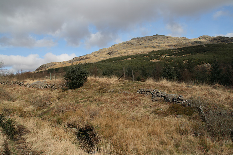 Looking back to Harter Fell