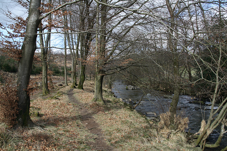 Riverside path as we follow the River Duddon upstream back to Birks Bridge