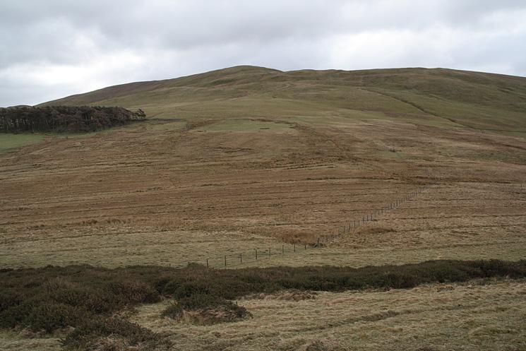 Broom Fell from Burthwaite Heights