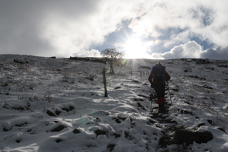 Heading up from Swirls and we are soon in the snow
