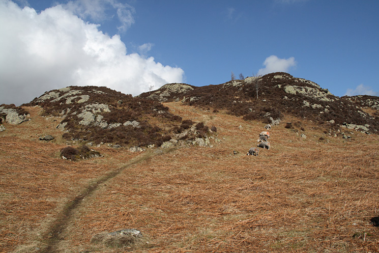The path to King's How summit