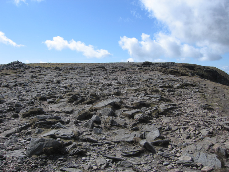 Ingleborough's summit plateau as we head for the summit trig point