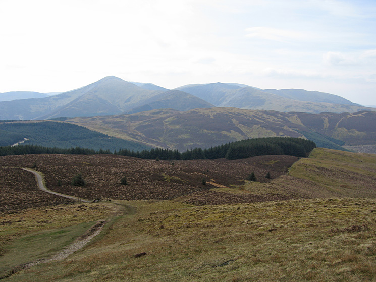 The Grisedale Pike fells from Lord's Seat summit
