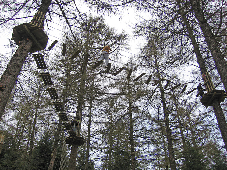 Lots of people 'going ape' at Whinlatter Forest Visitor Centre