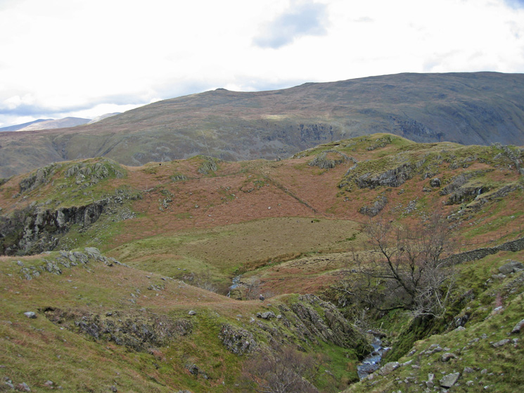 Looking across to Low Saddle, High Saddle and Ullscarf from by Big Stanger Gill