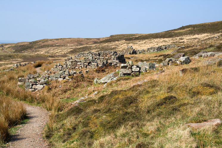 The remains of the village on Handa